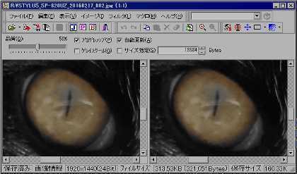 BT32_20160519_001.jpg